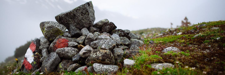 Hochtour, Führungen, Alpinschule, Bergführer, Hochtourenkurs, Grundkurs