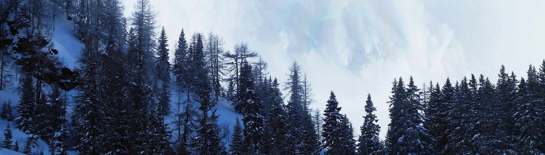 Bergführer Tauern Skitouren Ammerer Hof, Österreich