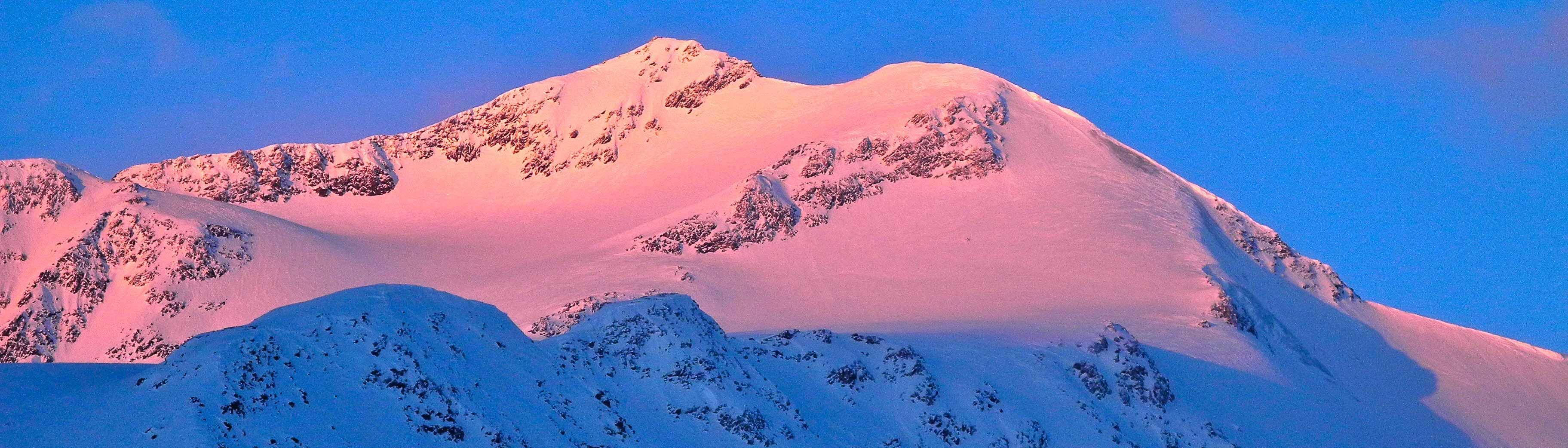 Skitouren Ortler mit Berführer